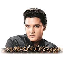Elvis In Concert Live On Screen