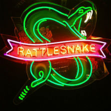 Rattlesnake of Angel London